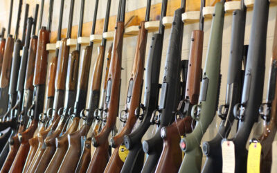 How a recent Indiana Supreme Court ruling strengthens gun shop protections